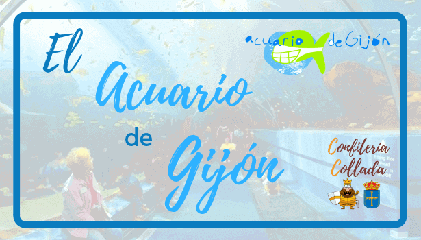El Acuario de Gijón | Ofertas y Precios