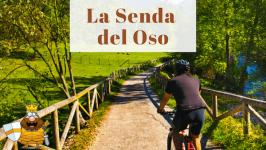 Ruta de la Senda del Oso en Asturias